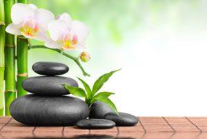 le monde zen